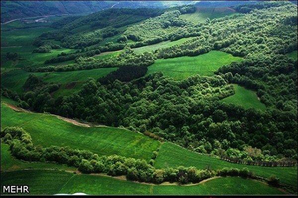 مشارکت بانوان می تواند در حوزه حفاظت از محیط زیست موثر باشد
