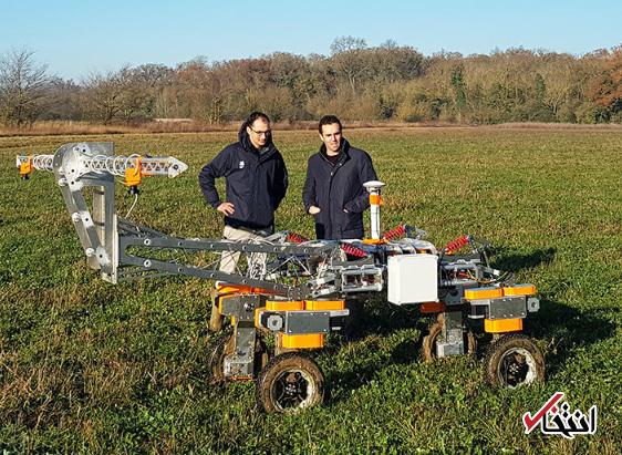 استفاده از ربات برای هرس علفهای هرز در مزارع انگلیس