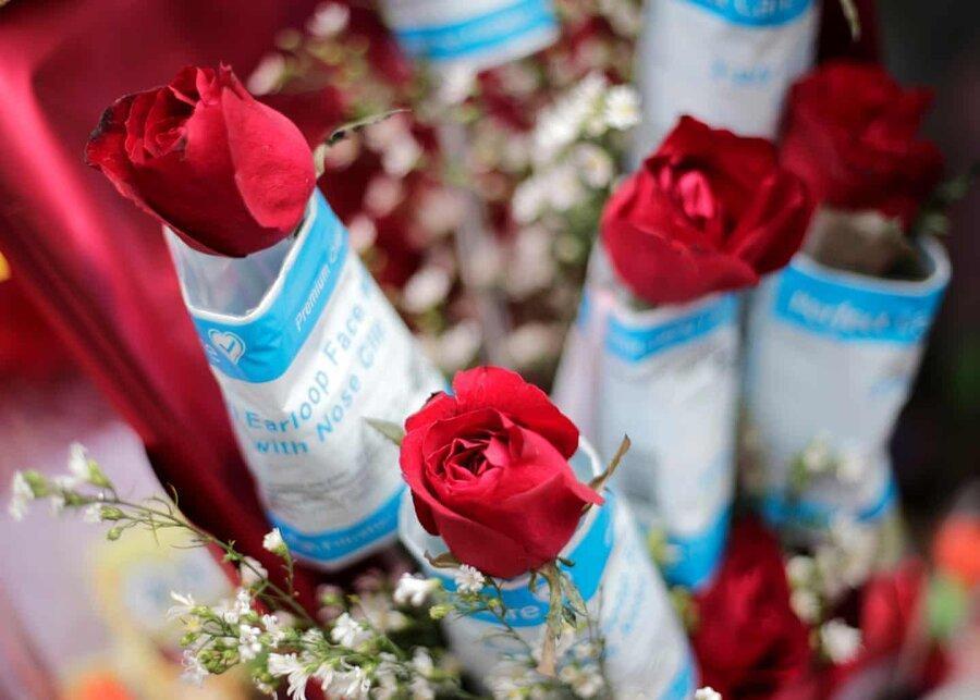 عکس روز، گل سرخ با ماسک