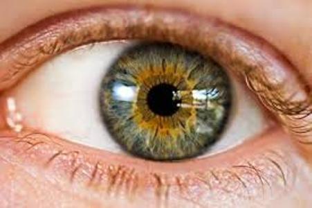 نقش سمن ها در ارتقاء سلامت بینایی مردم مناطق محروم