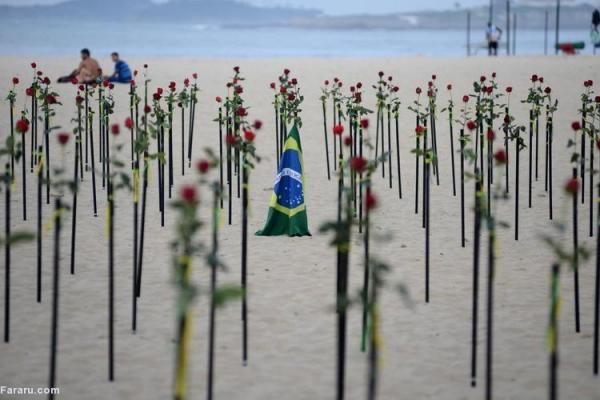 (ویدئو) اعتراض با گل رز در یادبود 500 هزار قربانی کرونا در برزیل
