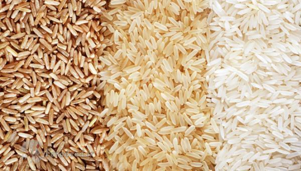 برنج قهوه ای چیستبرنج قهوه ای مفیدتر است یا سفید؟